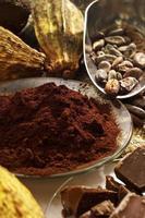 Kakaopulver in Schüssel, Kakaobohnen und Schokoladenstücke foto