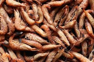 gekochte Garnelen hautnah