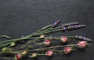 Damaskus Nigella und Lavendelzweige foto