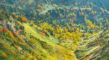 Herbstlandschaft von Shiga Kogen Shibutoge