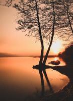 Silhouette der Bäume auf dem Wasser während der goldenen Stunde foto