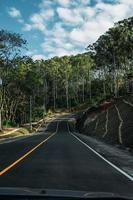 Straße durch grüne Bäume