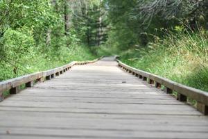 brauner Holzweg in einem Park