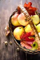 Herbstäpfel im Korb foto