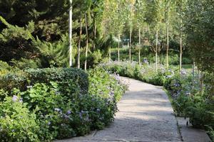 Parkweg von Blumen umgeben foto