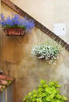 Blumentöpfe auf rustikaler Dorfmauer