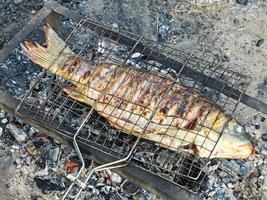 Fisch bereitet sich auf dem Grill vor.