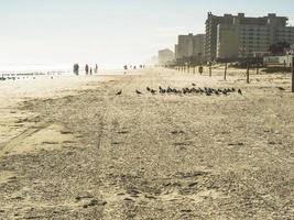 ein Morgen am Strand foto