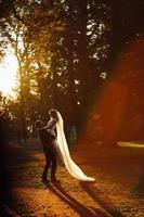 schönes Hochzeitspaar, das im Park mit Sonnenhalos umarmt foto