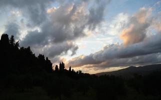 Silhouettierte Bäume unter weißen Wolken und blauem Himmel während des Tages foto