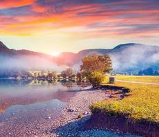 nebliger Sommermorgen im Dorfpark Stara Fuzina