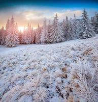 bunter Wintersonnenaufgang in den Bergen.
