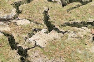 trockene Bodennahaufnahme