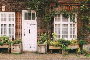 london, england, 2020 - verschiedene pflanzen vor einem haus