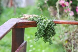 Karotten am Geländer