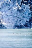 erstaunliches Alaska foto