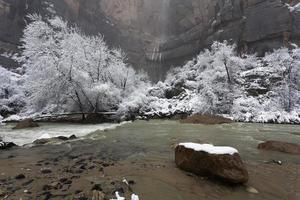 Winteransicht des jungfräulichen Flusses in Zion Canyon