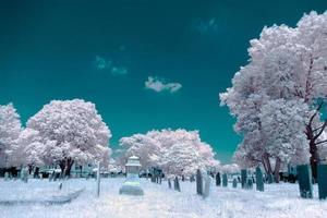 Infrarotfriedhof