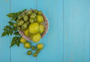 Früchte in einer Schüssel auf blauem Hintergrund mit Kopienraum