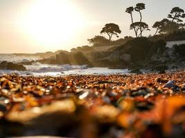 Sonnenuntergang an einem französischen Riviera Strand