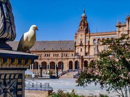 Sevilla, Spanien, 2020 - weiße Taube thront auf Statue auf dem Plaza de Espana