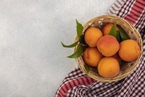 Aprikosen auf kariertem Stoff und neutralem Hintergrund mit Kopierraum