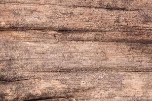 alter Holzbretthintergrund foto