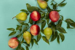 Draufsicht des Fruchtmusters mit Blättern auf blauem Hintergrund foto