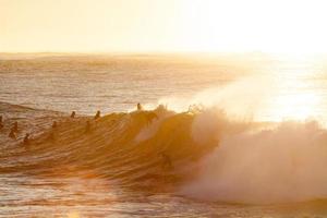 Silhouetten von Menschen, die zur goldenen Stunde surfen foto