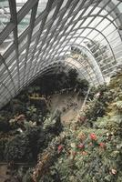 Singapur, 2018-Touristen versammeln sich im Garten am Bay Biodome