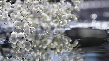 verträumte künstlerische weiße Zigeunerblume, Hochzeit, romantisch foto