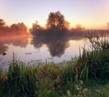 Morgendämmerung am Fluss