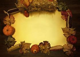 Herbsternte flach legen Rahmen foto