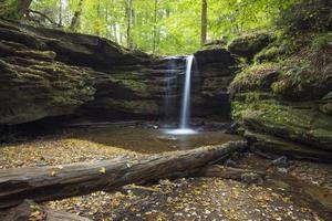 tagsüber von Bäumen umgebene Wasserfälle