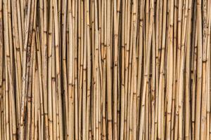 Bambusstock Hintergrund