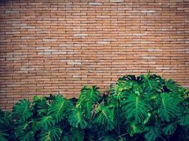 alte rote Backsteinmauer Textur foto