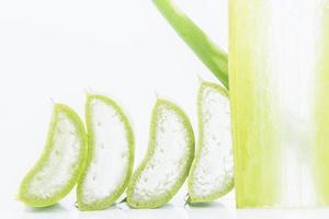 geschnittene Aloe Vera auf weißem Hintergrund