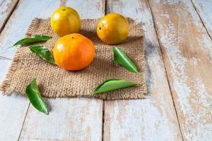 frisch geerntete Orangen