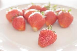 Erdbeeren auf einem weißen Teller foto
