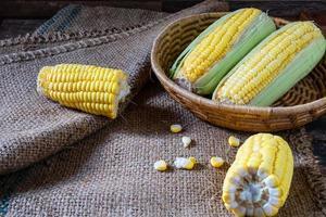 frischer Mais in einem Korb foto
