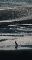 Person, die tagsüber mit Hund an der Küste geht