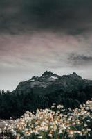 Bett aus weißen Blumen unter Nimbuswolken foto