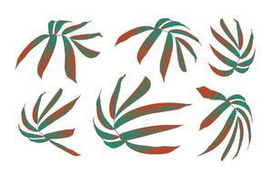 Blätter isoliert auf weißem Hintergrund