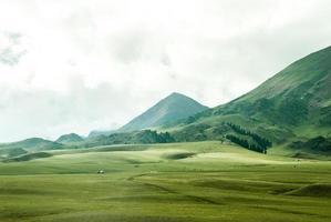 Vogelperspektive von Grasland neben Berg foto