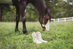 weiße Stiefel in der Nähe von Pferd