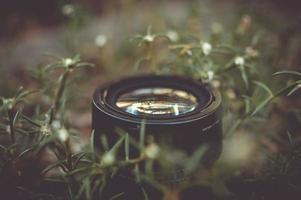Kameraobjektiv umgeben von grünem Gras im Freien