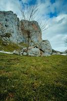 von Asturien und See von Covadonga im Winter mit grünem Gras und Schnee
