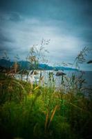 Gras und der Strand