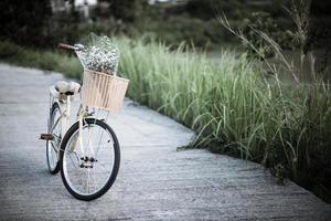 Fahrrad auf der Straße im Park geparkt