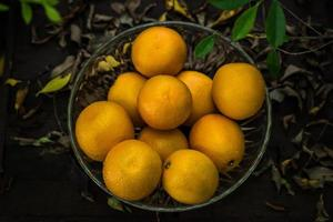 ein Korb mit frischen Orangen in der Natur